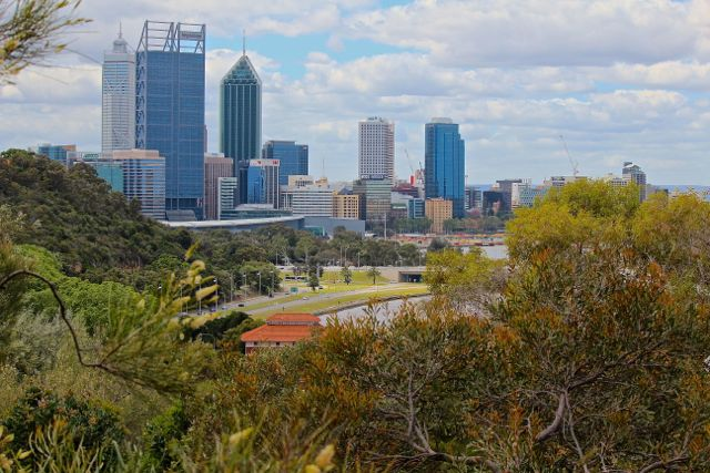 CBD from Kings Park 2.